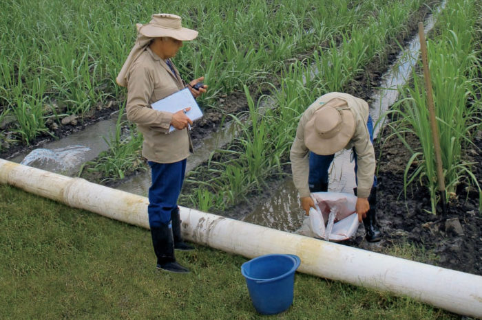 Administrative Control of Irrigation, CAR. Methodological guide
