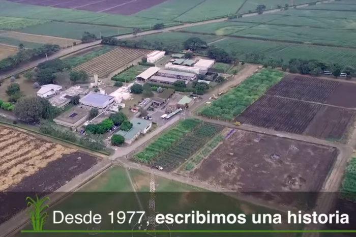 Institutional video Cenicaña 2016