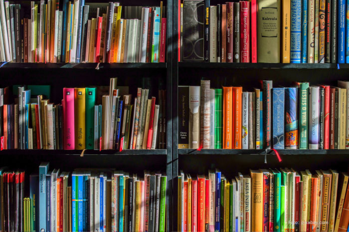 News in the library: books