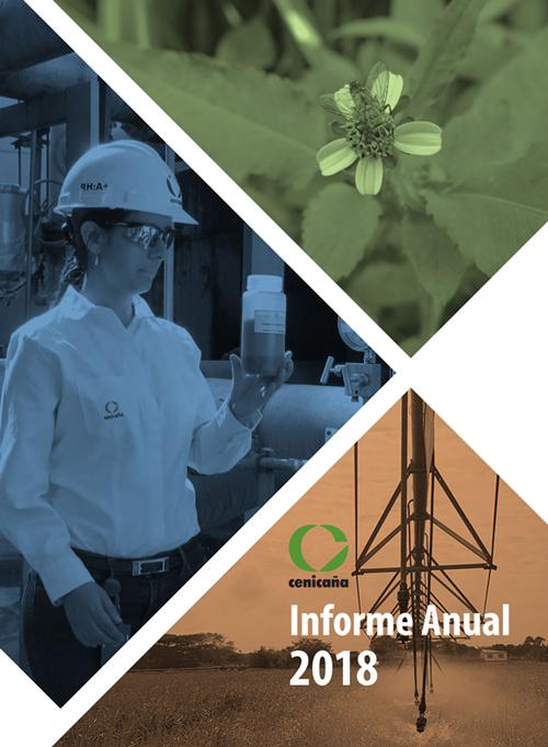 informe_anual_2018