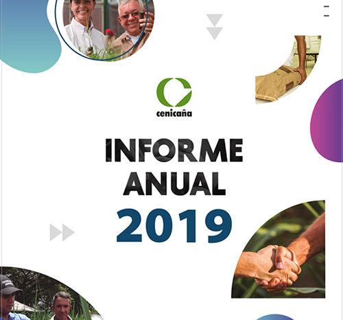 Informe anual 2019