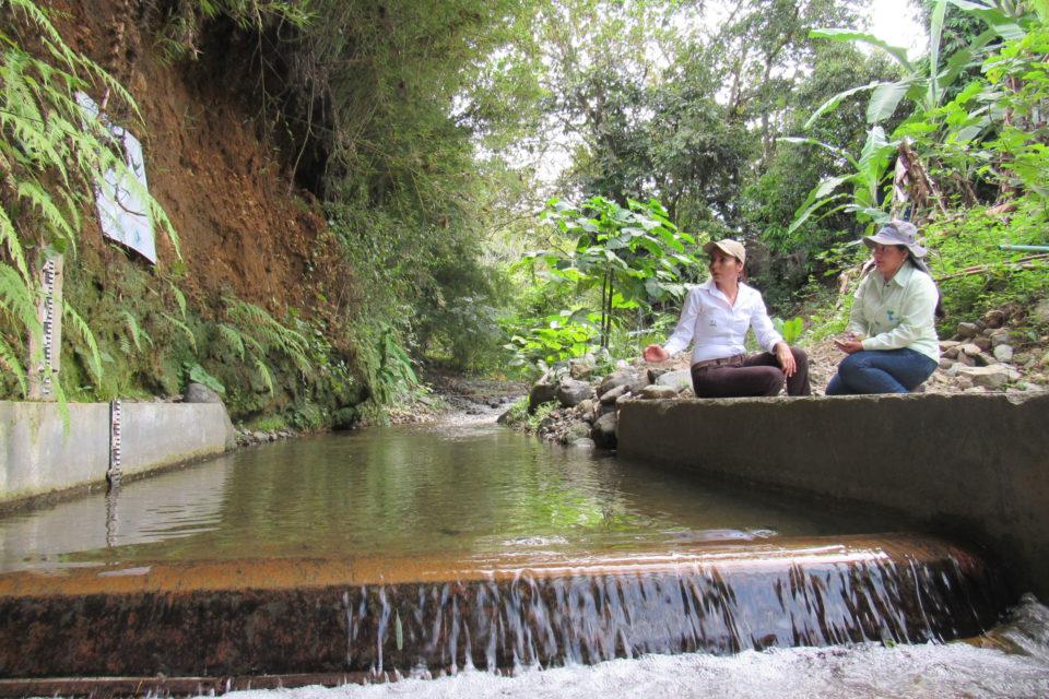 Colombia, ejemplo mundial en recuperación de fuentes de agua: Nature Conservancy