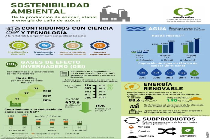 Environmental sustainability of the production of sugar, ethanol and energy from sugar cane