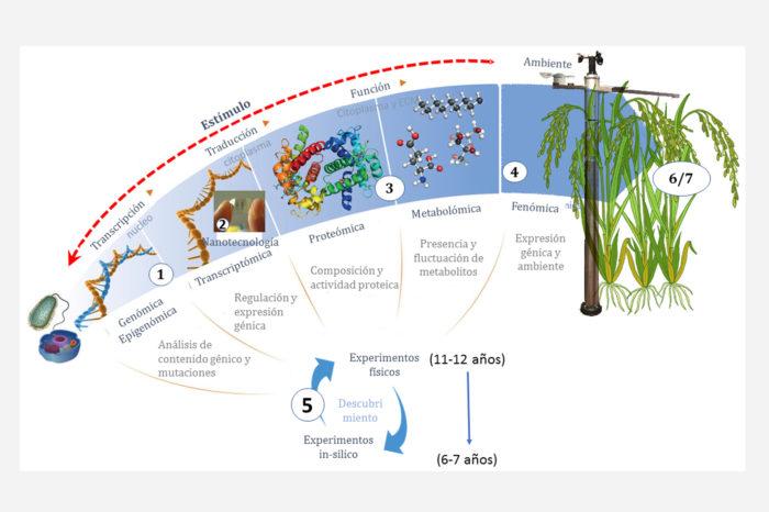 Ómicas: un aporte científico de la agroindustria a la seguridad alimentaria del país