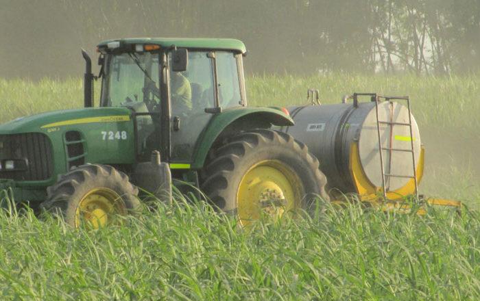 Conceptos básicos de fertilización en caña de azúcar, 26-may-2020