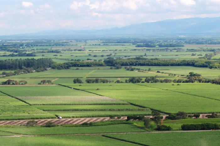 Proyecciones del clima en el valle del río Cauca, junio-julio 2020
