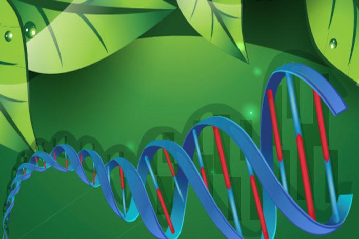 Herramientas Fenómicas y Genómicas, estrategias clave para acelerar la ganancia genética de los cultivos, 5-jun-2020