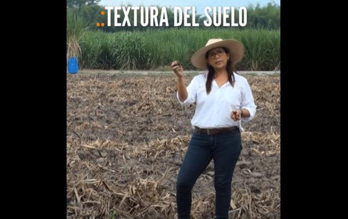 #Tips para agricultores | Textura del suelo. Determinación del nivel de humedad