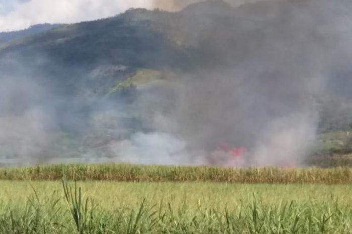 No más ceniza: área para quema de caña se reduce a la mitad en Valle